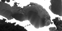 Activity inside pits of comet 67P observed by the Rosetta mission helps to explain their origin